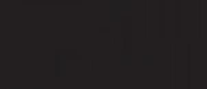 Standaardlogo, zwart (NL)_96dpi_302x130px